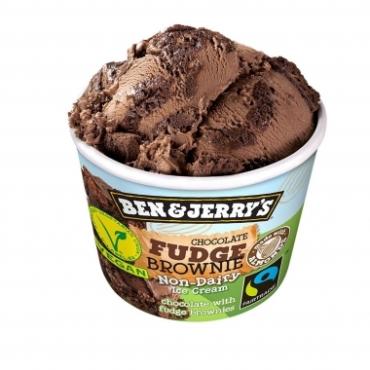 Ben & Jerry's Vegan Chocolate Fudge Brownie 100ml